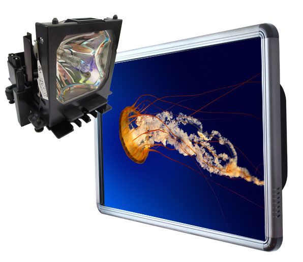 Touch Screen cheaper than replacement projector lamps
